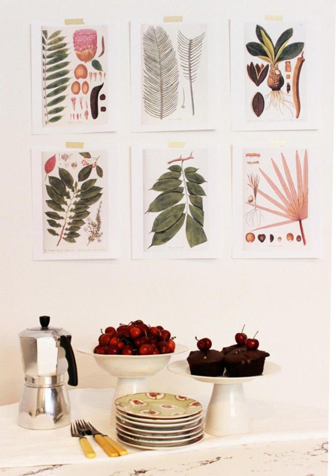 laminas botanica para descargar