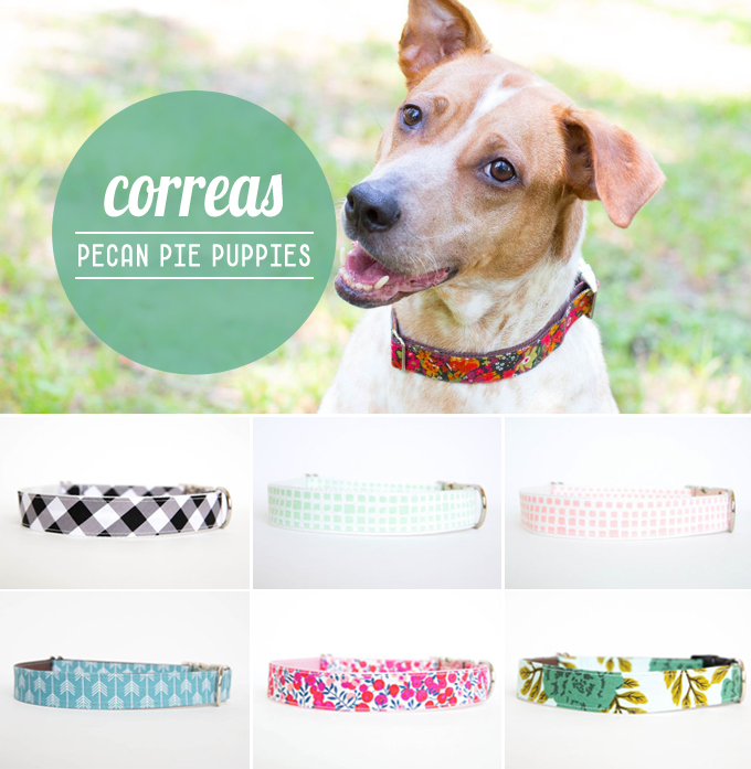 correas bonitistas - pecan pie puppies