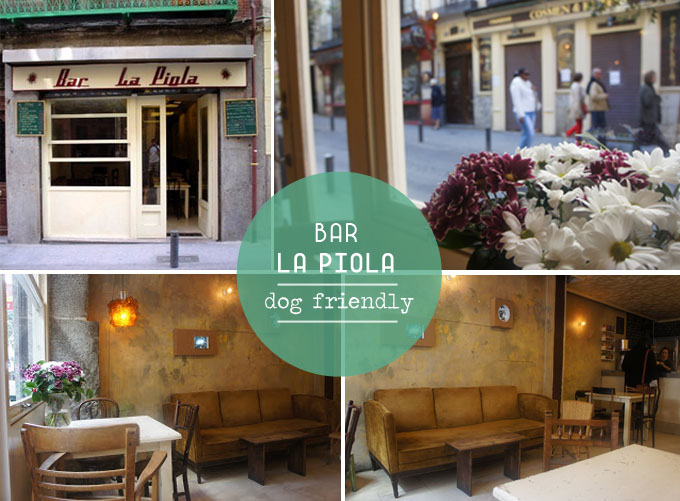 bar la piola - dog friendly