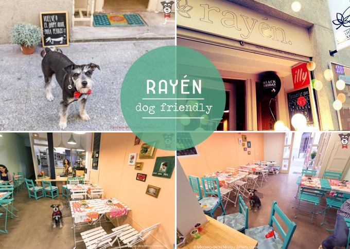 rayen - dog friendly