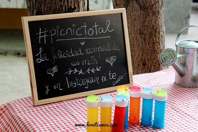 detalles picnictotal - bonitismos