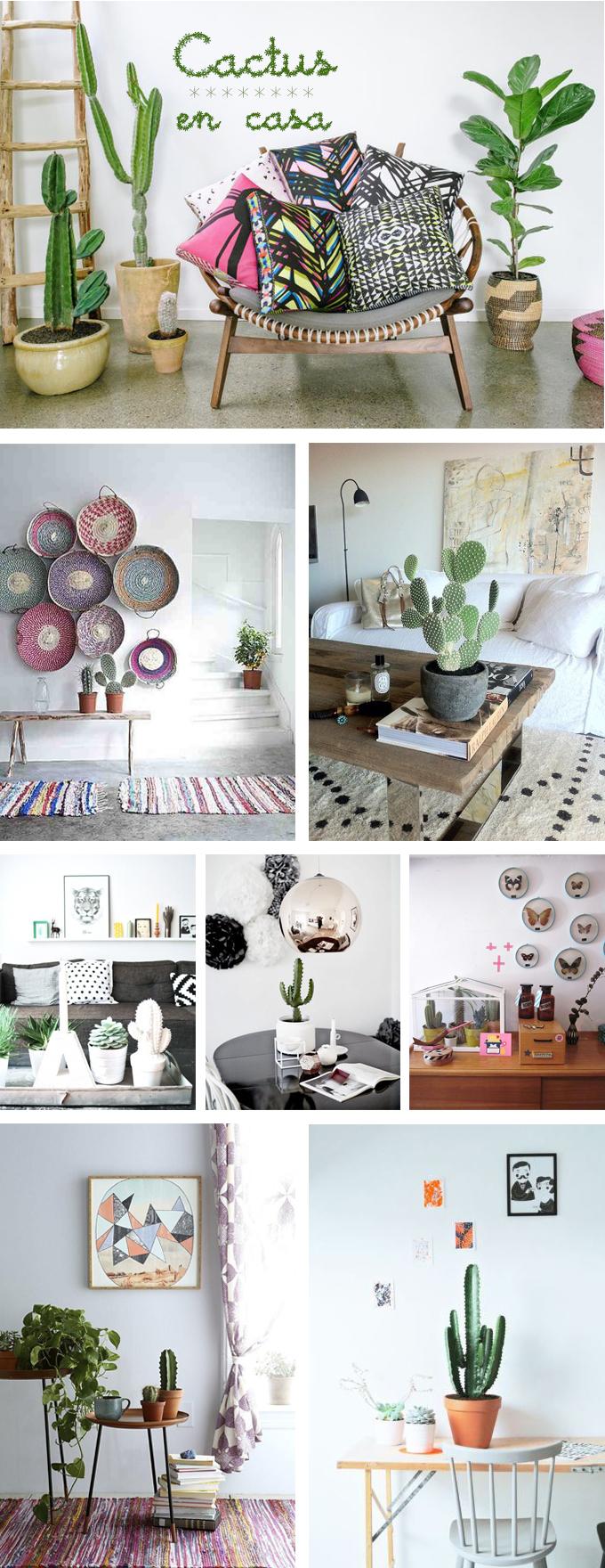 cactus casa decoracion