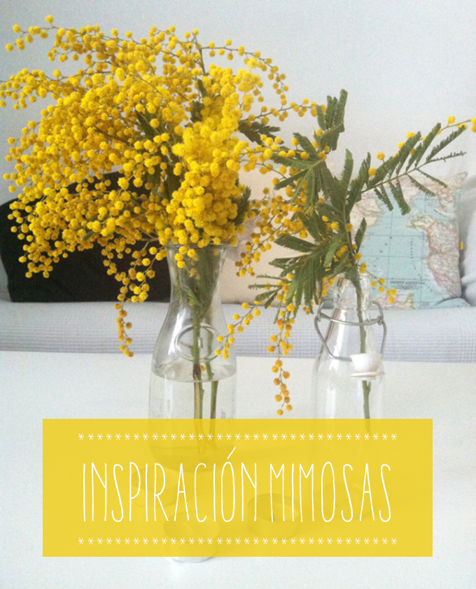 inspiracion mimosas