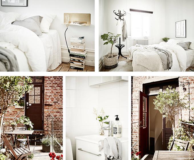 casa con plantas 2