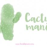 cactus deco