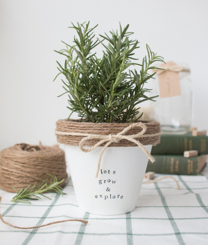 maceta-lets-grow