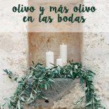bodas olivo 1