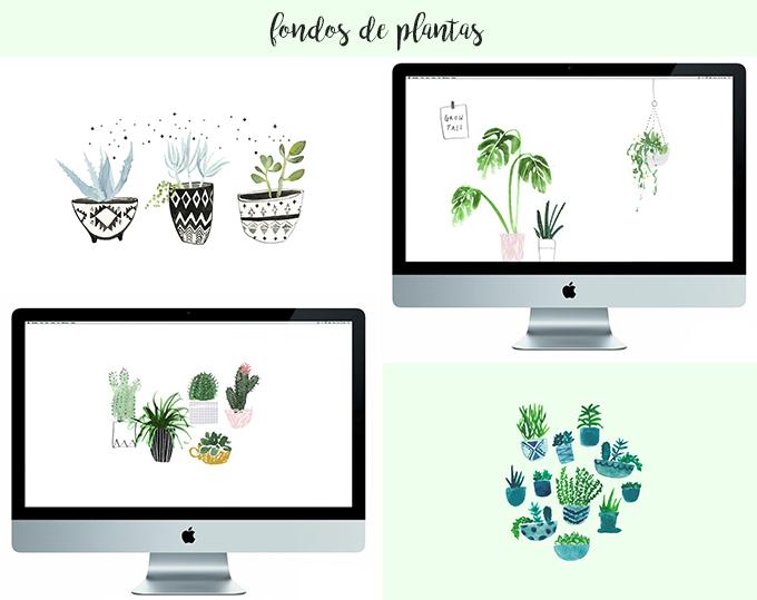 fondos de escritorio plantas