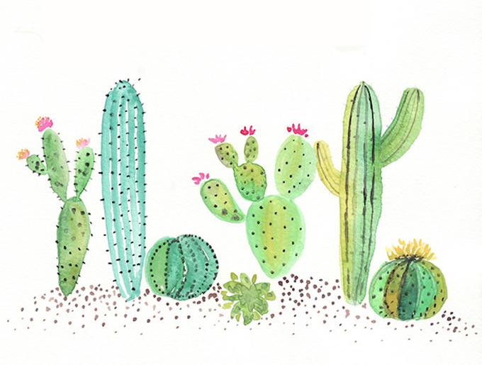 Imagenes Lindas Para Fondo De Pantalla Animada: Fondo-pantalla-ordenador-cactus
