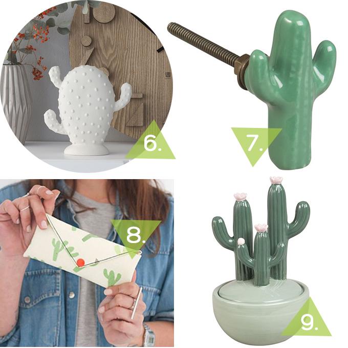regalos-cactus